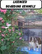 Licenced Boarding Kennels